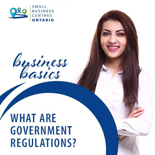 What Are Government Regulations?
